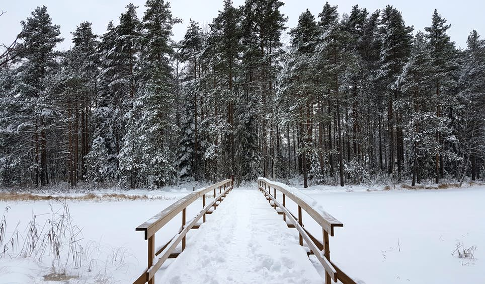 A snowy scene in Nuuksio National Park, one of Finland's many spine-tingling landscapes © Emma Sparks / Captured on Samsung Galaxy S7 / S7 edge