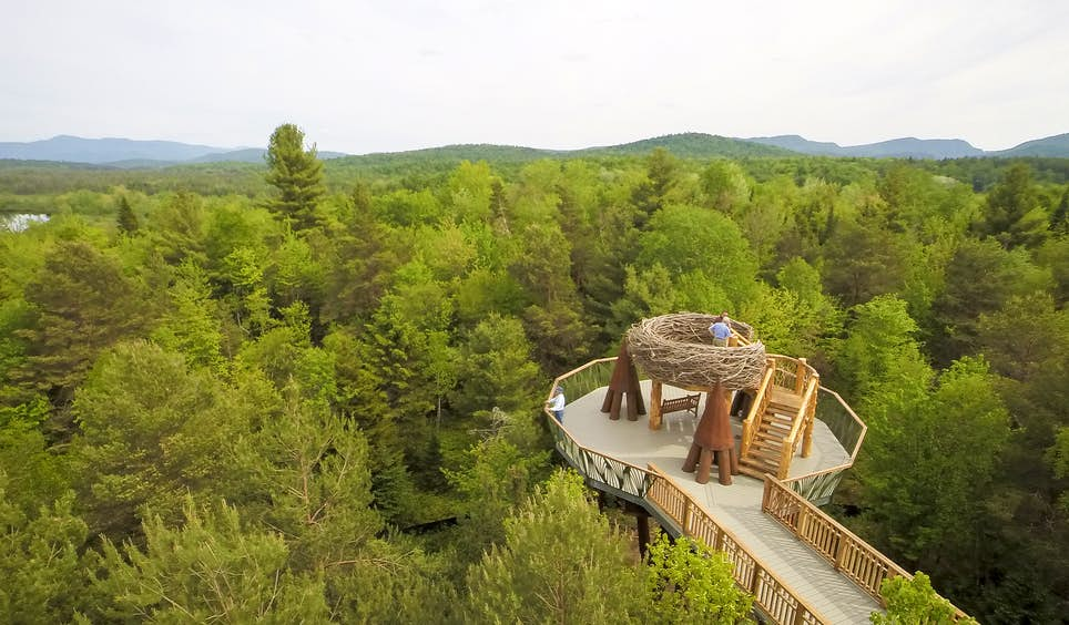 The 'Wild Walk' offers a different perspective of the Adirondacks  © The Wild Center