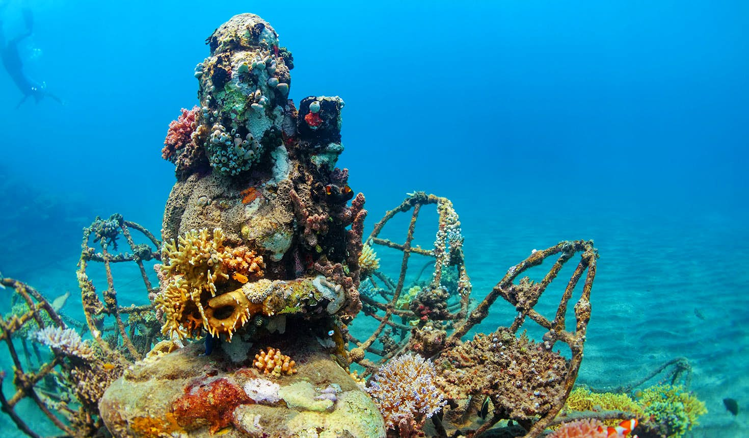 A coral-covered Buddha statue off the coast of Pemuteran, Indonesia. Image: Tropical studio / Shutterstock