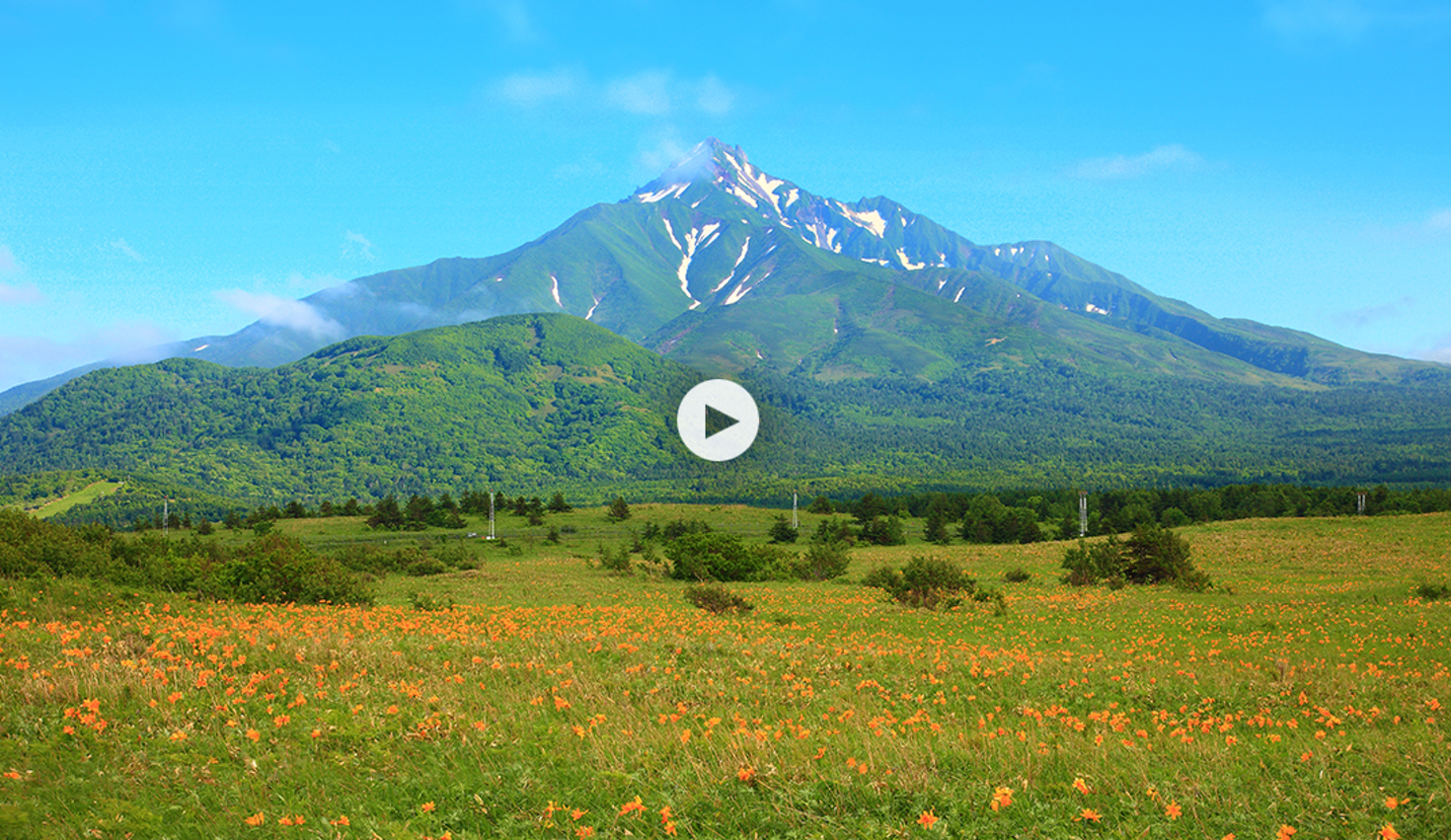 Mount Rishiri towers over a field of wildflowers off the coast of Hokkaidō, Japan © Seigo Yamamura / Getty Images