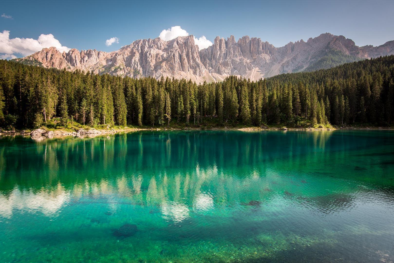 The Lake: (The Lake Series, Book 1)